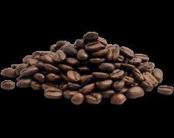 caffè in grani coffee club